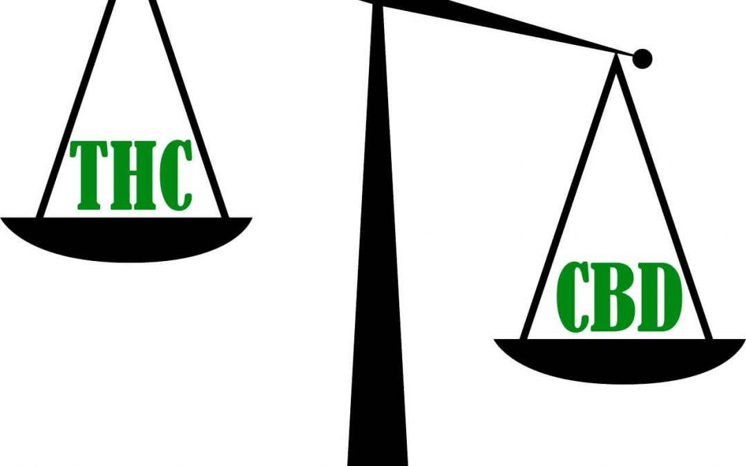 CBD y los efectos psicoactivos del THC
