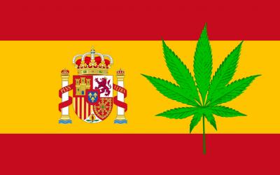 Regulación del Cannabis Medicinal en España