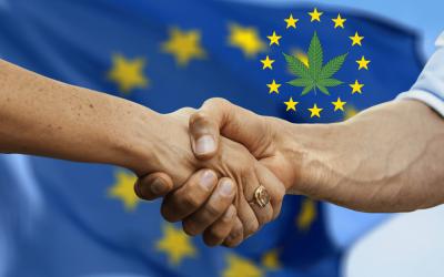 Expansión Europea de la Asociación para la Industria de Cannabinoides (ACI)